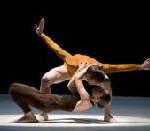 Balletts am Rhein Düsseldorf Duisburg: Martin Schläpfer im Präsidium der BBTK gewählt / Gastspiel in Amsterdam