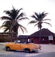 Mobil in den USA: Günstige Preise für Alamo-Mietwagen bei Buchung über ebookers.de