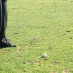 "Penha Longa Hotel, Spa & Golf Resort ist Gastgeber der ""Estoril Open de Portugal"""