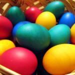 Last-Minute-Reisen: Eiersuche unter Palmen