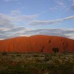Das Outback wie es leibt und lebt