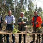 Nürnberg: Nachhaltiger Waldumbau am Airport Nürnberg: Jungpflanzen für den Sebalder Reichswald