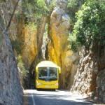 Mit dem Bus preiswert europäische Nachbarn besuchen
