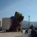 BASKENLAND:  WALBEOBACHTUNG VOR BILBAO