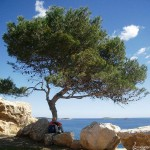 Ibiza – einmal anders erleben