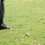 Golfturnier mit exklusivem Meerblick: erste DR Open 2010