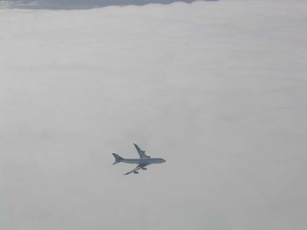 Passagiernachfrage im internationalen Luftverkehr legt zu