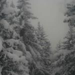 Bad Bayersoien für Spontane: Zu Silvester in die Berge