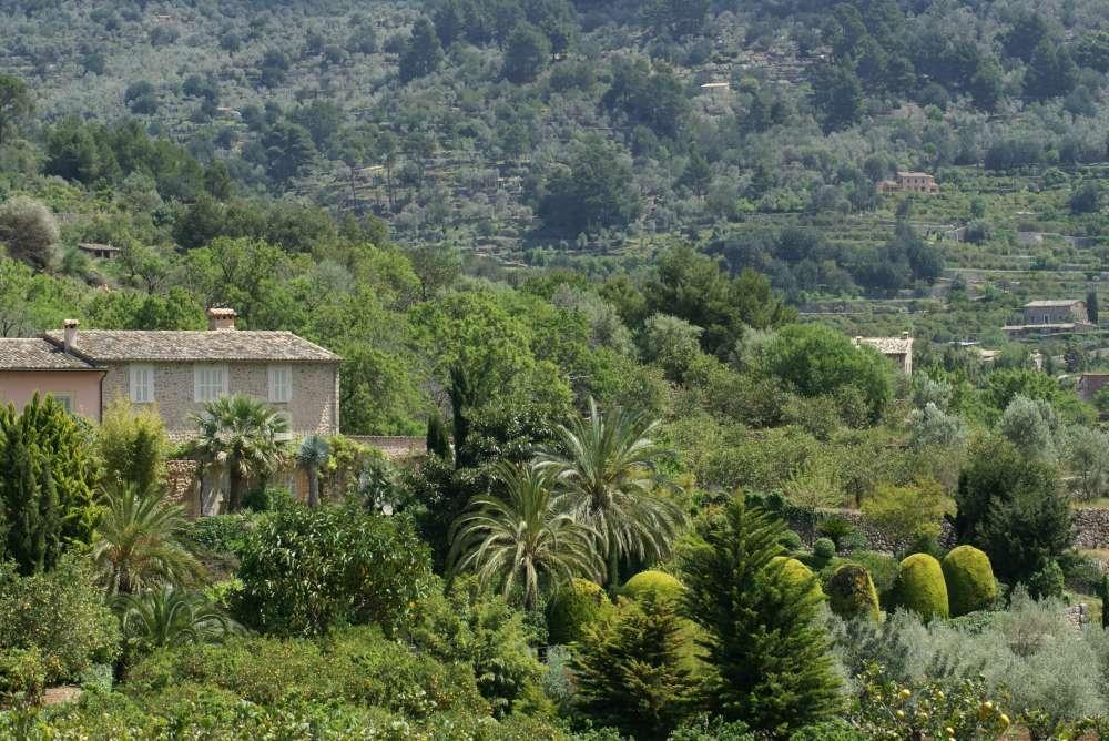 TUI bietet grünen Ausflug: Nordic Walking auf Mallorca