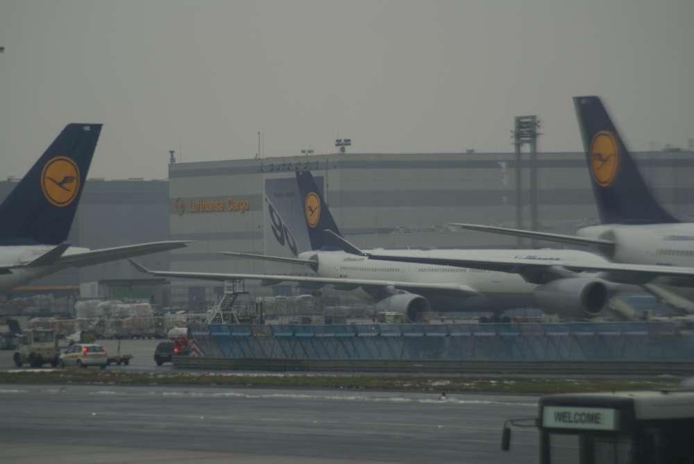 Sommerflugplan in Frankfurt: Mehr Flüge und ein deutlich vergrößertes Sitzplatzangebot
