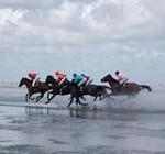 Duhner Wattrennen 2011 in Cuxhaven