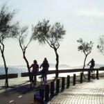 Mallorca 2018 – Die Nummer 1 für den Radsport