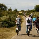 RheinRadWeg: Radtouren für Sprinter und Genießer