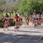 Zusammenarbeit mit vier großen Spezialveranstaltern auf Mallorca gestartet