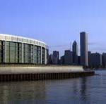 Transparente Schönheiten: Die Welt der Quallen in Chicago