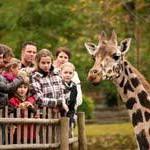 Burgers' Zoo plant neuen Spielplatz