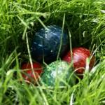 Dorint Resort & Spa Bad Brückenau: Nestwärme im Rhöner Frühling