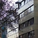 A&O verlängern Mitgliedschaft bei SYTA