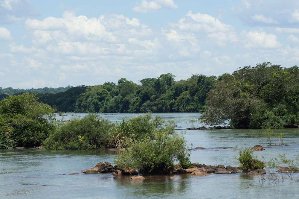 Mozart im Regenwald: Das Opernfestival in Manaus hat begonnen