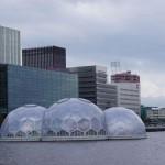 Lufthansa fliegt erstmals nach Rotterdam