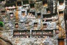 Langhäuser, hängende Gräber und die Götterinsel: Indonesien mit Studiosus umfassend erleben