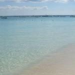 Dr. Beach wählt Strand in Miami unter die Top Ten der USA