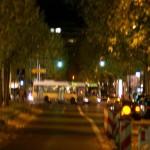 Die urbanen Dschungel Berlins