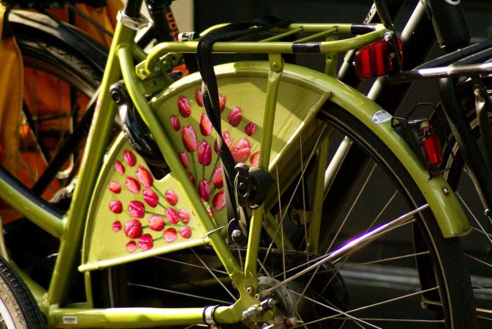 Fahrradfahren auf den TOP-Routen in Holland