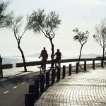 Palma mit dem Fahrrad entdecken