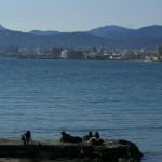 Balearen haben in den Sommerferien Hochkonjunktur