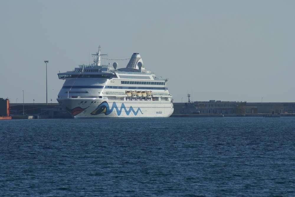 """Beisst das Kußmaul an? 450 gefährdete Delfine getötet – Aida soll nicht auf """"Inseln der Walmörder"""" landen."""