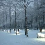 Entdecke dein Düsseldorf – bei einem Rundgang mit dem Nachtwächter