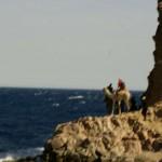 Außenministerium rät dringend von Reisen auf den Sinai ab