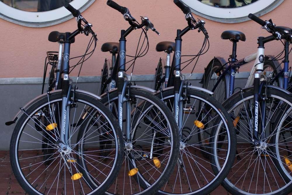 """Facettenreiches Niederösterreich """"per pedales"""" entdecken"""