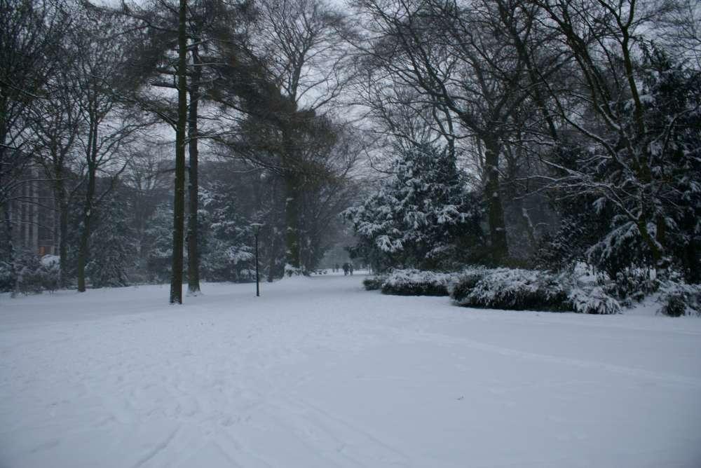 Neu bei ITS: Extra Wintersport-Programme