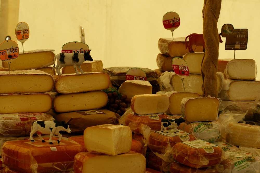 Tessiner Spezialitäten – genussvolle Ausflüge zu regionalen Produkten