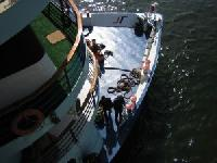 VICTORIA CRUISES spricht neue Zielgruppen für Flusskreuzfahrten an