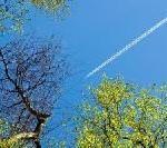 Vergleichstest: Auf Flugreisen gezielt CO2 sparen