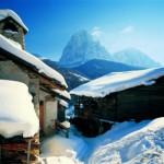 Auf Schneeschuhen zum Christbaumschlagen