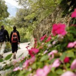 Aufblühen in den Vitalpina Hotels Südtirol