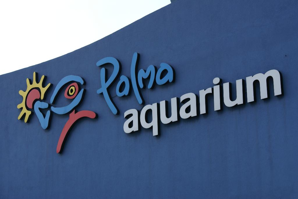 Palma Aquarium auf Mallorca - Staunen zwischen Haien, Fischen und Algen (09010) Foto: ©Carstino Delmonte (2009)