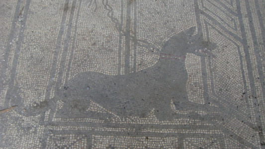 Italien - Pompeii (Region Neapel) Impressionen (6575) Foto: ©Carstino Delmonte (2007)