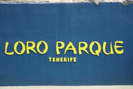 Teneriffa - Loro Parque: Flora, Fauna, wilde Tiere und Delfinshows (09296) Foto: ©Carstino Delmonte (2009)