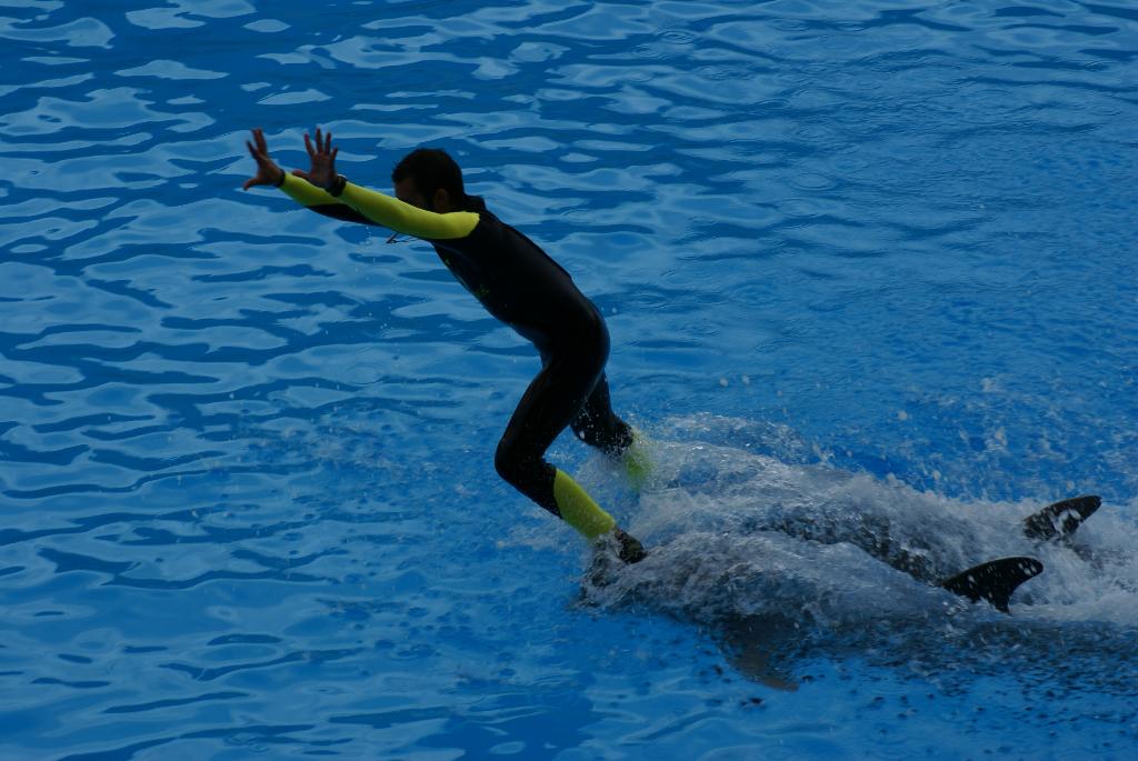 Teneriffa - Loro Parque: Flora, Fauna, wilde Tiere und Delfinshows (09496) Foto: ©Carstino Delmonte (2009)