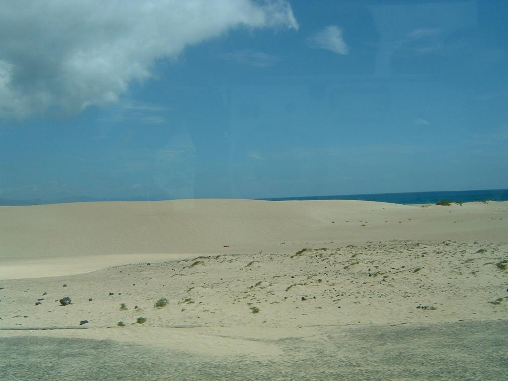 Fuerteventura - Kanarische Inseln, Spanien (00259) Foto: ©Carstino Delmonte (2009)