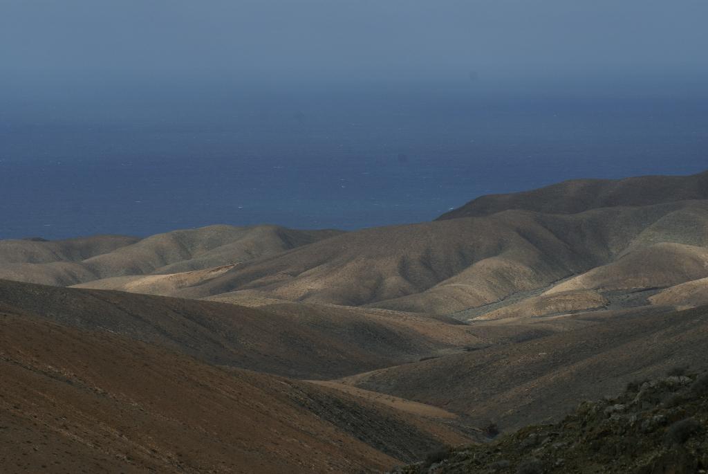 Fuerteventura - Kanarische Inseln, Spanien (07809) Foto: ©Carstino Delmonte (2009)
