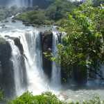 Touristikwirtschaft: Die besten Publikationen zum Thema Sustainable Responsibility