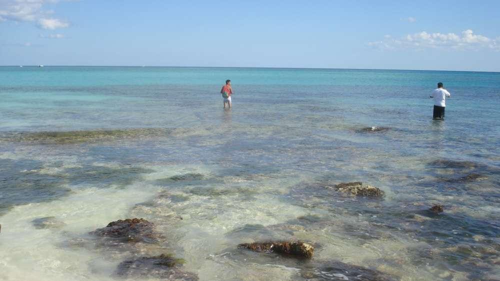 """Israels Nationalparks sollen """"grüne"""" Tourismusinseln werden"""