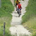 Erholungsoase Wald: Sperrgebiet für Fahrradfahrer?