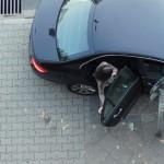 Wenn Mietwagenfahrer kriminell handeln